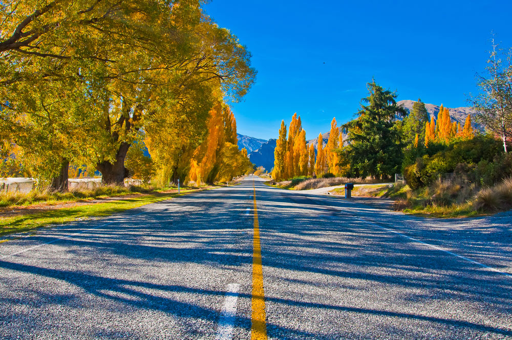 -road-south-of-te-anau-new-zealand-south-island