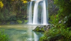 the-whangarei-falls-northland-new-zealand